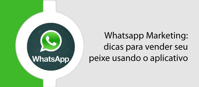 Whatsapp Marketing: dicas para vender seu peixe usando o aplicativo